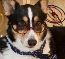 Science Dog Sticker