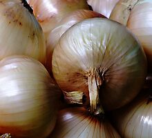 Onions by Dave Lloyd