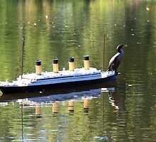 Hitching A Ride by HALIFAXPHOTO