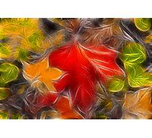Autumn Color Palette Photographic Print