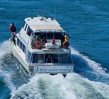 Tamar River Cruiser by Tim O'Neil
