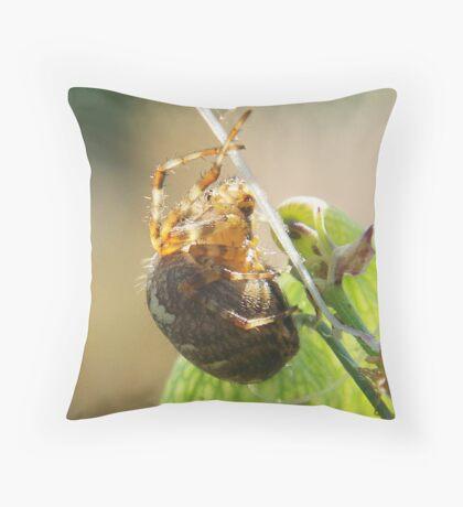 Plump Spider Throw Pillow