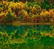 Autumn in Jiuzhaigou by Daniel H Chui