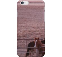 morning neigh iPhone Case/Skin
