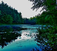 Holt Pond by Christopher  Malatesta