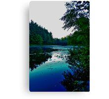 Holt Pond Canvas Print