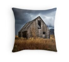 Broke Down Beauty Throw Pillow