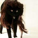 Mullet Cat! by minnielee
