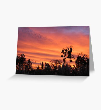 Sudden streaks Greeting Card