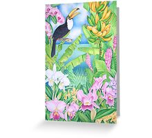 Toucan of the Amazon Greeting Card