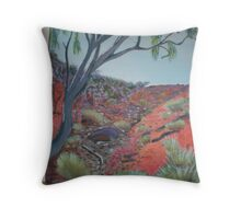 Outback oz in acrylic  Throw Pillow