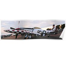 P51 Poster