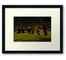 Before The Sun Sets Framed Print