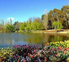 Commonwealth Park, Canberra by Penelope Thomas