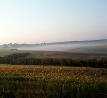Praire morning by maragoldlady