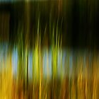 abstract 22 by Aimelle