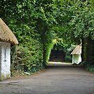 Bunratti - Ireland by Arie Koene
