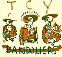 Them Crooked Vultures: Bandoliers by Travis Martin