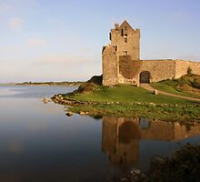 Dunguaire castle view  by John Quinn