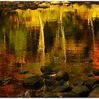 Monet autumnal 02 by Aimelle