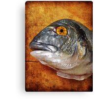 When a fish cries... Canvas Print