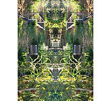 Northcote Community Gardens 12 Photographic Print