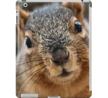 You use Canon? COOL! iPad Case/Skin