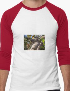 Koala Bear Men's Baseball ¾ T-Shirt
