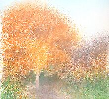 Autumn colours by Carl Conway