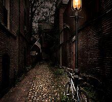 Cobblestone Lane by Annette Blattman