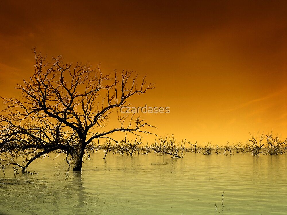 Menindee Lake by czardases