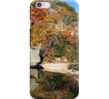 Lost Maples Reflection iPhone Case/Skin
