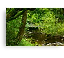 Across the River Twiss Canvas Print