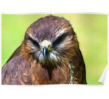 Fractual Falcon Poster