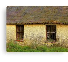 I Think We Need New Curtains Paddy Canvas Print