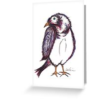He was a shy sparrow. Greeting Card