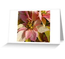 Middle Bee Greeting Card