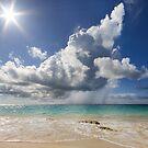 Summer Sunshine by Lucy Hollis