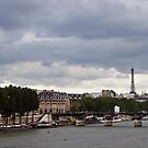 view of the Eiffel tower from the Seine, Paris by chord0