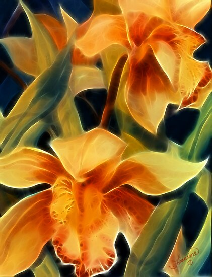 The Light in Orchids by Francine Dufour Jones
