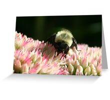 Bee & Bloom Greeting Card
