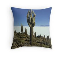 Isla del pescado - Bolivia Throw Pillow