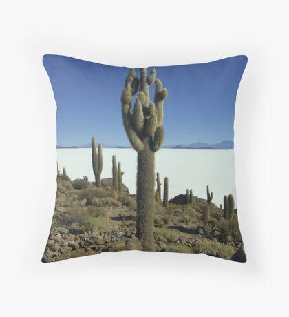 Isla del pescado - Bolivia Throw Pillow