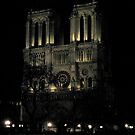 Notre Damn by Night by Honor Kyne