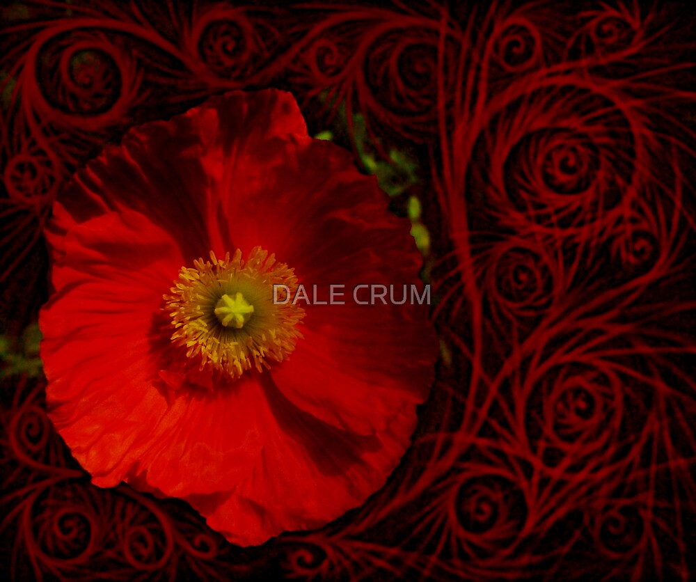 THE POPPY DANCE by DALE CRUM