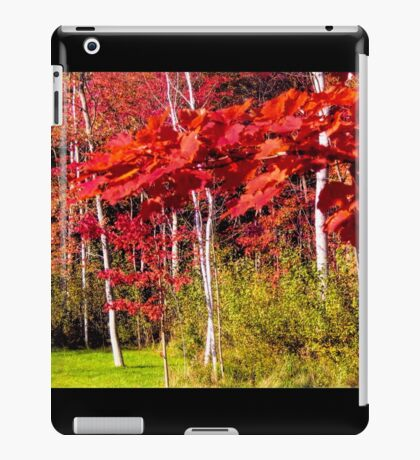 Canadian Maple iPad Case/Skin
