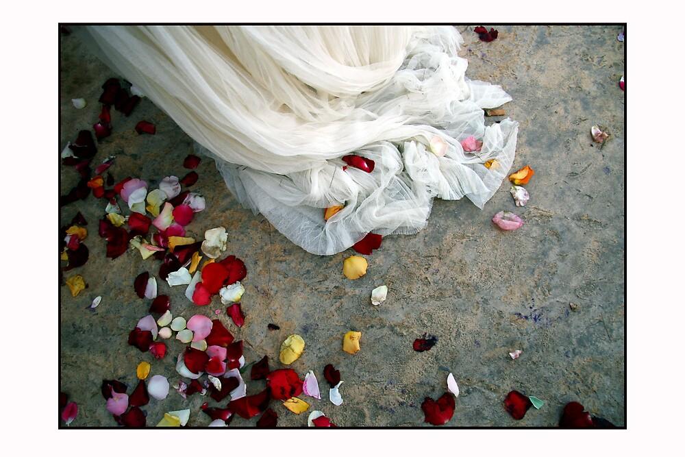 Wedding Dress Detail Dos by Philip  Rogan