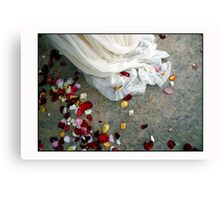 Wedding Dress Detail Dos Canvas Print