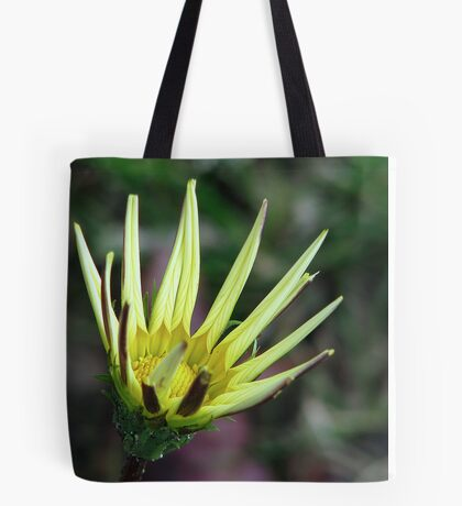 Yellow Gazania 1 Tote Bag