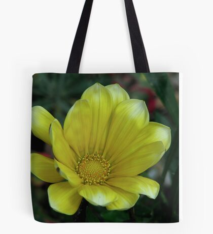 Yellow Gazania 2 Tote Bag